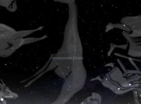 Sessão Constelações: Girafa