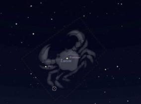 Série Constelações: Câncer